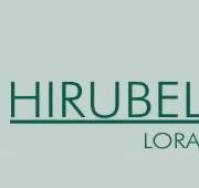 floristeria-hirubelar-logo