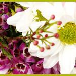 floristeria-hirubelar-plantas-artificiales